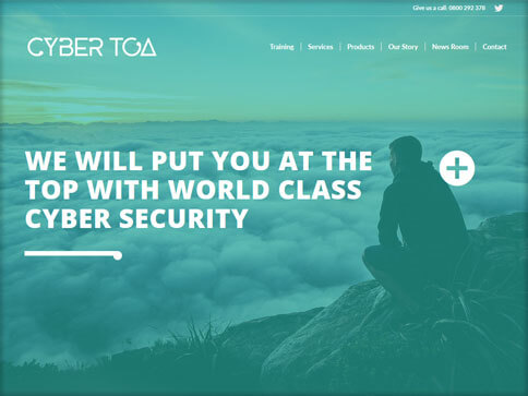 Cyber Toa Website