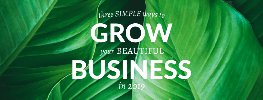 Grow your business with Nettl in 2019