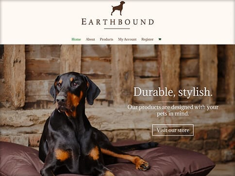 Portfolio_Earthbound