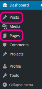 Wordpress posts & pages