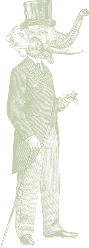 elelephant-man