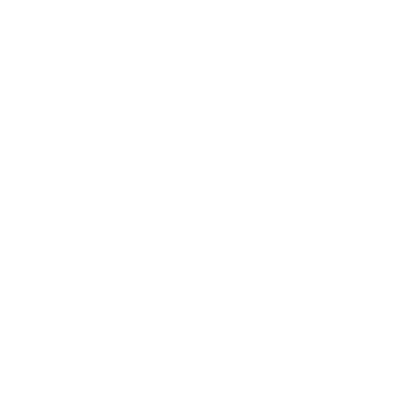 Spark Website Joy Logo Design