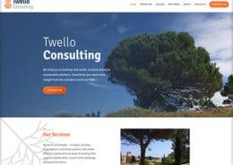 Twello Consulting img1