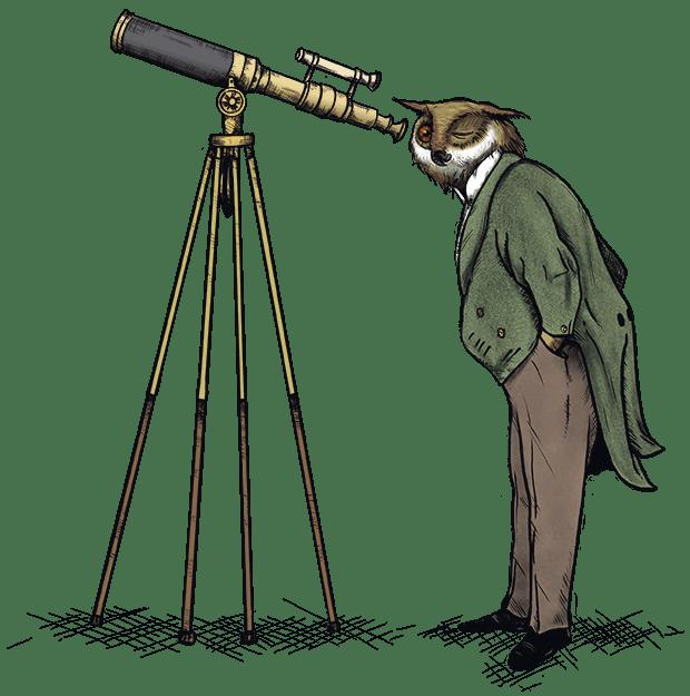 SEO Owl