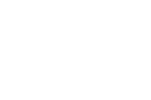 flywheel effect logo