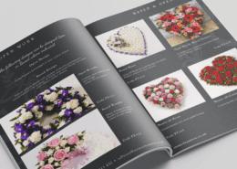 Stems-Brochure