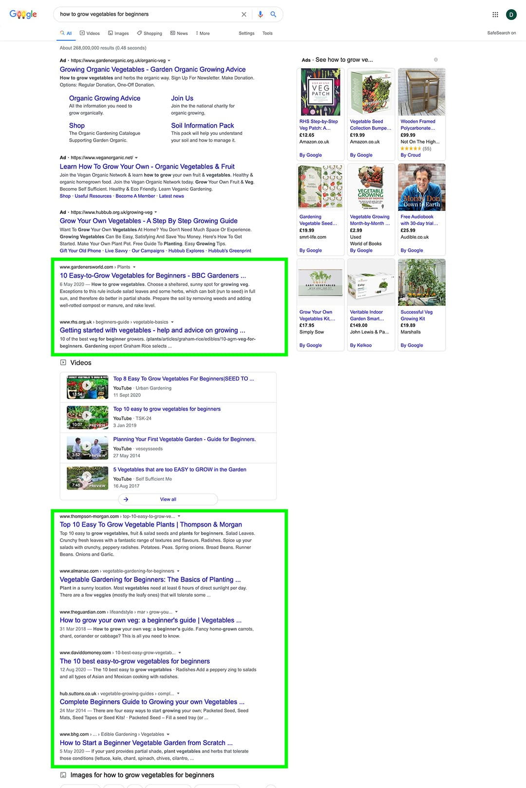 seo organic search results on google search engine results page